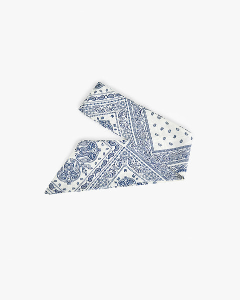 point paisley tie